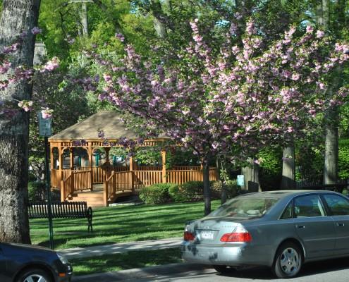 Homeowners Insurance Pelham